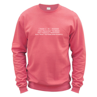Formula for Accountants Sweater