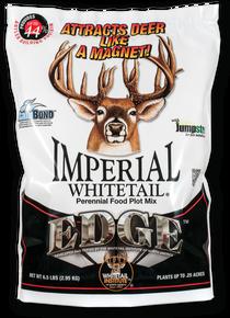 Imperial Edge (Perennial)