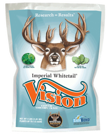 VISION (Perennial) SPECIAL