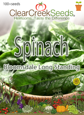 Spinach - Bloomsdale Long Standing (100+ seeds)