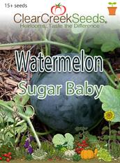 Watermelon - Sugar Baby (15+ seeds)