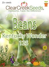 Bean - (Bush) - Kentucky Wonder 125 (25+ seeds)