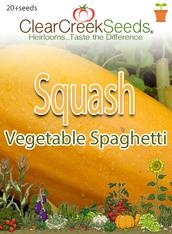 Squash Winter - Vegetable Spaghetti (20+ seeds)