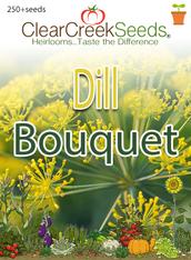 Dill - Bouquet (250+ seeds)