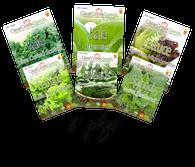 Salad Pack (6 packs)