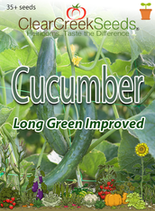 Cucumber - Long Green Improved (35+ seeds)