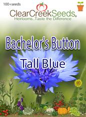 """Bachelor Button """"Tall Blue""""(100+ seeds)"""