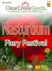 "Nasturtium ""Fiery Festival"" (20+ seeds)"