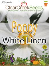 "California Poppy ""White Linen"" (200+ seeds)"