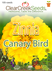 "Zinnia ""Canary Bird"" (100+ seeds)"