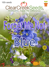"Forget Me Not ""Blue"" (100+ seeds)"