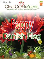 """Poppy - """"Danish Flag"""" (100+ seeds)"""