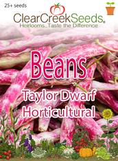 Bean-Taylor Dwarf Horticultural (25+ seeds)
