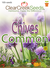 Chives - Common (100+ seeds)