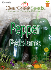 Pepper - Poblano (50+ seeds)