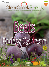 Beets - Ruby Queen (50+ seeds)