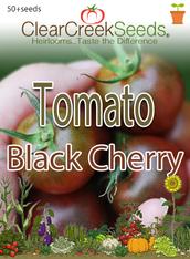 Tomato - Black Cherry (50+ seeds)