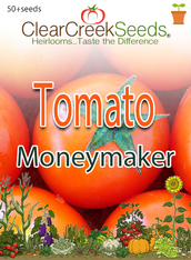 Tomato - Moneymaker (50+ seeds)