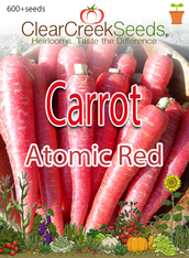 Carrot – Atomic Red (600+ seeds) JUMBO PACK