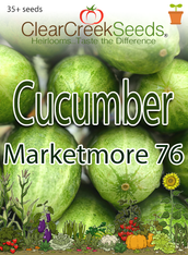 Cucumber - Marketmore 76 (35+ seeds)