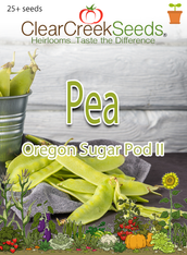 Pea Snow - Oregon Sugar Pod II (25+ seeds)