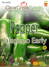 Pepper Hot - Jalapeno Early (50+ seeds)