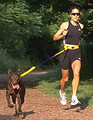 Jog Leash™ / Wonder Leash™
