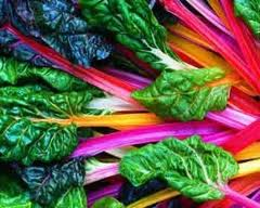 Colorful Swiss chard