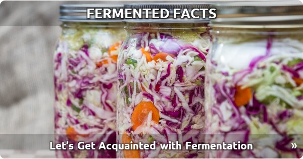 Fermented Facts