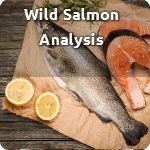 Wild Salmon Analysis
