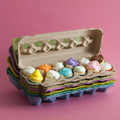 Paper Egg Carton Rainbow Pack