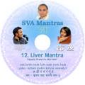 SVA Mantras - #12 Spine
