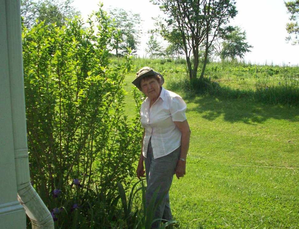 organic herb farm granny