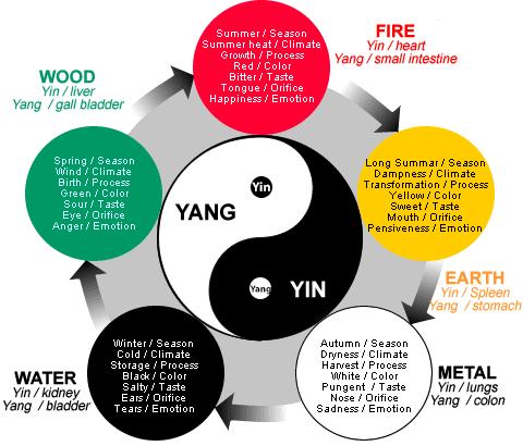 TCM and Yin and Yang