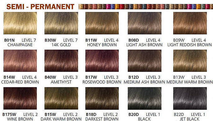 clairol professional color chart: Clairol beautiful collection moisturizing semi permanent hair color