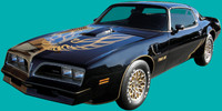 1976-1978 TRANS AM SPECIAL EDITION DECAL KIT (BANDIT)