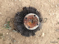 40 Series, 2F Fan Clutch