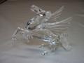 SCS 1998 Pegasus