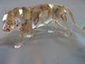 SCS 2010 AE Tiger