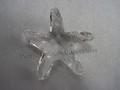 SCS 2005 Starfish