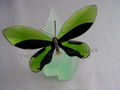 Anamosa Butterfly Object with Leaf Display