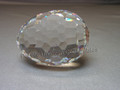 Egg Paperweight ~ Clear