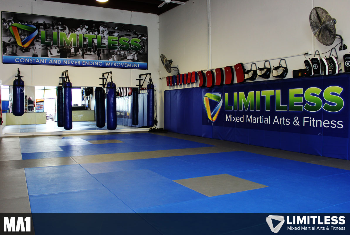 MA1 Equipped Commercial Gym Fitout - Limitless Mixed Martial Arts & Fitness