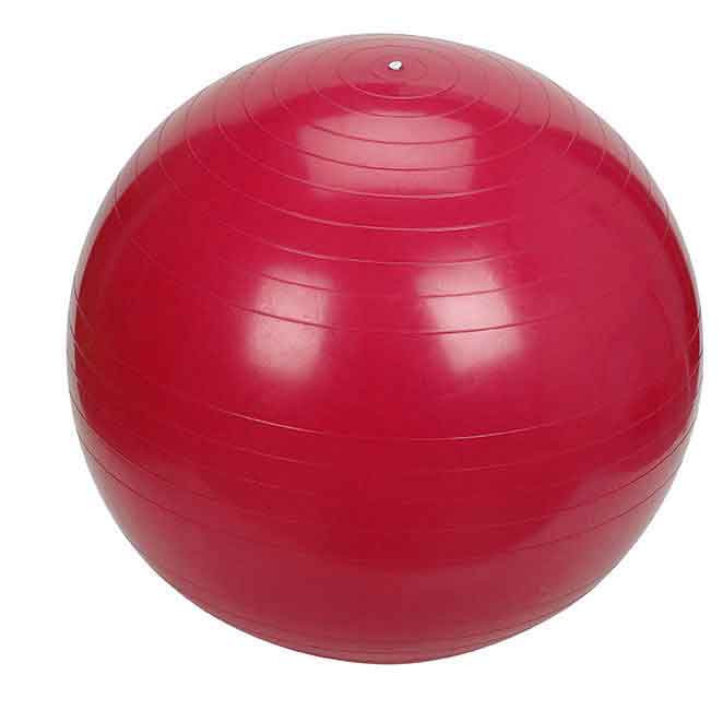 Gym Ball 55cm