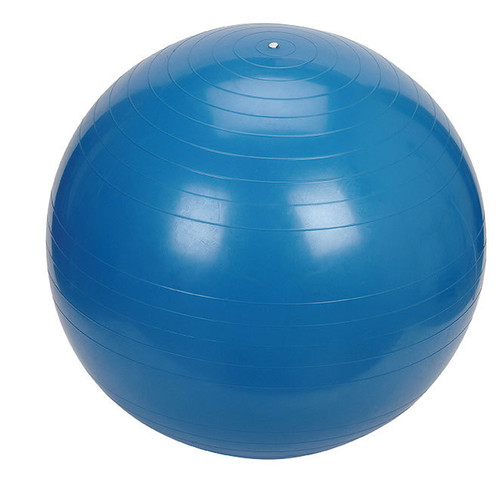 Gym Ball - 65cm, Blue