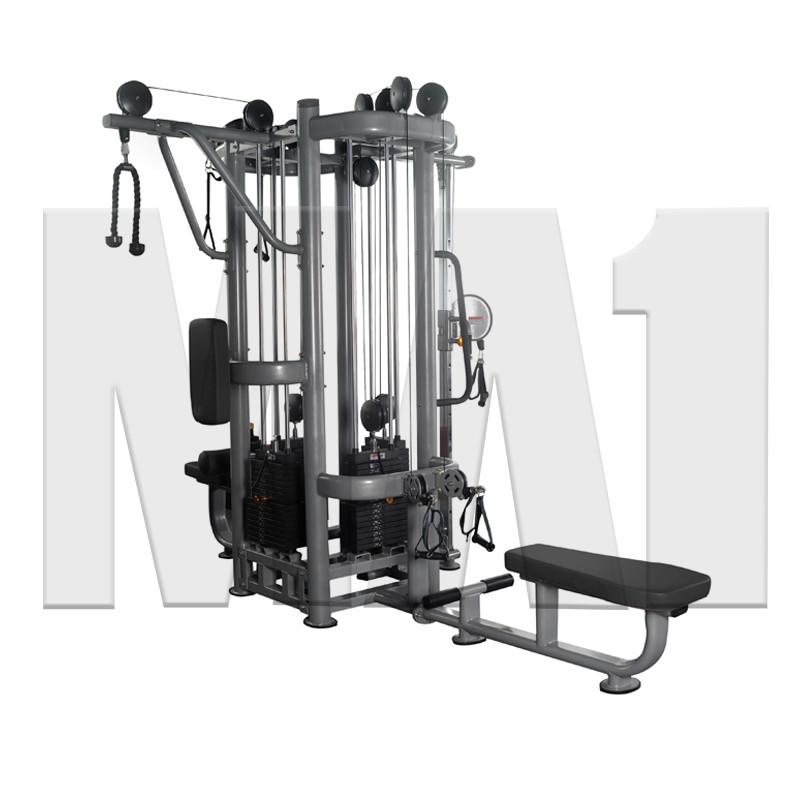 MA1 Elite 4 Station  Jungle Gym