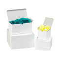 "4"" x 4"" x 2"" White  Gift Boxes 100/Case"