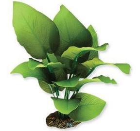 Aqua One Sword Radicans Silk Plant - Med (24113)