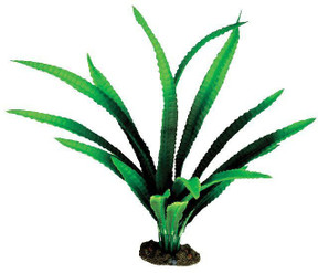 Aqua One African Onion Silk Plant - Large (24126)
