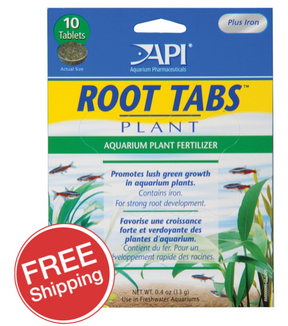 API Root Tablets 10pk
